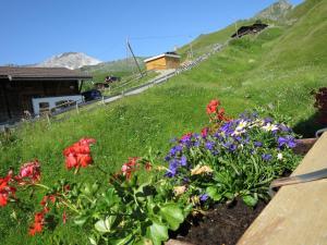 Chli Alpa B13 - Apartment - Arosa
