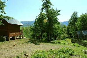 Turbaza Svetlyachok, Farm stays  Gornyy - big - 13