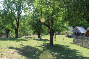 Turbaza Svetlyachok, Farm stays  Gornyy - big - 3
