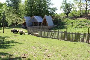 Turbaza Svetlyachok, Farm stays  Gornyy - big - 2