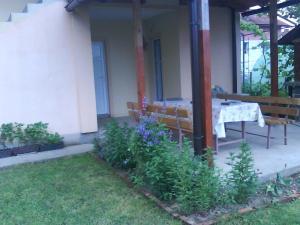 Apartment Anastasija - фото 17