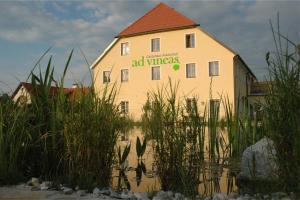 ad vineas Gästehaus Nikolaihof-Hotel Garni, Hotel  Mautern - big - 25
