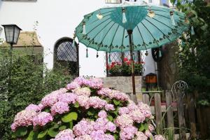 Haus Feuchtl, Guest houses  Purkersdorf - big - 26
