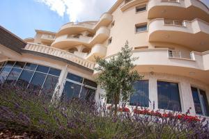 Hotel Jana - фото 7