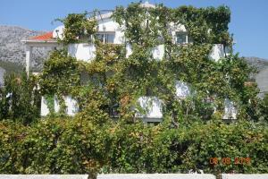 obrázek - Apartments Mistral Orebic
