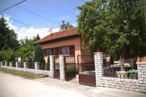 Krajinic Family House - фото 6