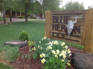 Blue Heron Inn Bed and Breakfast - Accommodation - Lorenzo