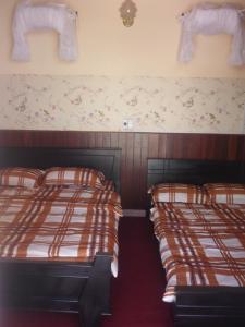 Dalat M.N Hostel