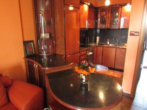 Bulhotel Pritzker Apartment, Apartmány  Sofia - big - 9
