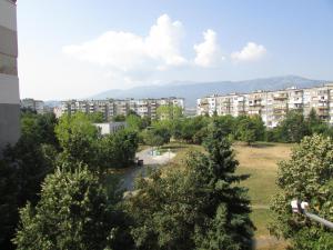 Bulhotel Pritzker Apartment, Apartmány  Sofia - big - 16