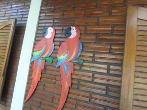 Pousada Laura / Ziza, Pensionen  Foz do Iguaçu - big - 39