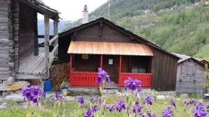 Möblierte charmante Wohnung in den Walliser Alpen