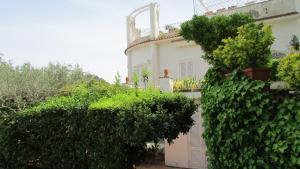 La Terrazza, Vily  Capri - big - 28