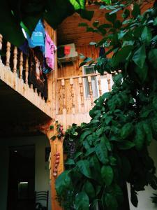 Гостевой дом у Ларисы - фото 3