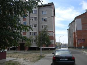 Апартаменты На улице Дружбы - фото 26