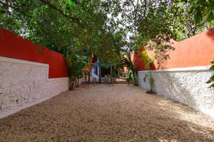 Casa de los Coyotes, Дома для отпуска  Мерида - big - 7
