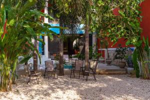 Casa de los Coyotes, Ferienhäuser  Mérida - big - 12