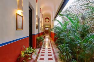 Casa de los Coyotes, Ferienhäuser  Mérida - big - 16