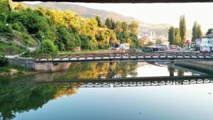 Pansion River - фото 14