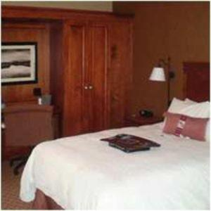 Hampton Inn East Peoria, Hotels  Peoria - big - 15