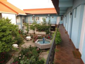 Hostel Tropical