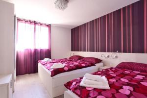 Apartment Sherka