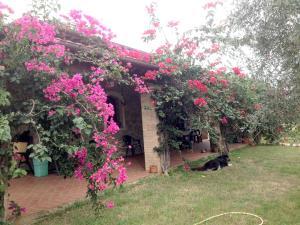 Casa Santina