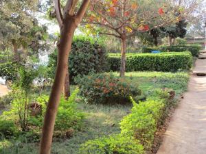 Crown Lodge Lilongwe, Lodges  Lilongwe - big - 11