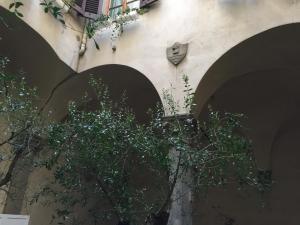 Velluti Maggio Suite, Apartmány  Florencie - big - 31