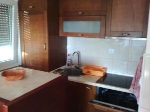 Apartment Savic