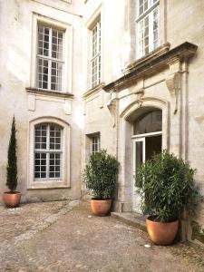 Maison Mademoiselle Avignon