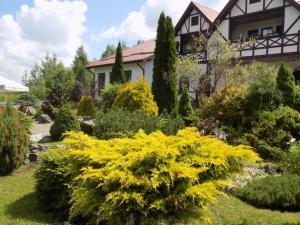 Inn Lisova Pisnya, Hotels  Dzvynyach - big - 73