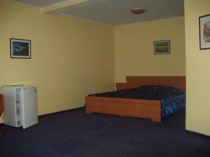 Inn Lisova Pisnya, Hotels  Dzvynyach - big - 3