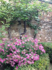 Holiday Home Casa del Pergolato, Dovolenkové domy  Montepulciano - big - 10