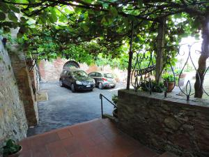 Holiday Home Casa del Pergolato, Dovolenkové domy  Montepulciano - big - 16
