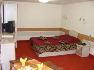 Motel Oana