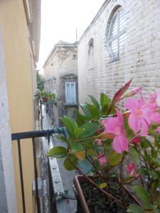 Palazzo Antica Via Appia, Отели типа «постель и завтрак»  Bitonto - big - 34