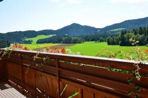 Erholung am Bauernhof bei Familie Seidl / Messner, Фермерские дома  Zeutschach - big - 10
