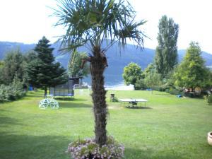 Ferienwohnungen Seerose direkt am See, Apartmány  Millstatt - big - 47