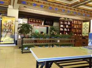 Tea Horse Road Hotel