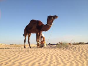 Maison Proche De Desert