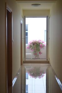 Rooms Guardian - фото 8