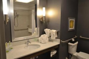 Holiday Inn Express & Suites Albany, Hotels  Albany - big - 5