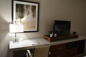 Holiday Inn Express & Suites Albany, Hotels  Albany - big - 6