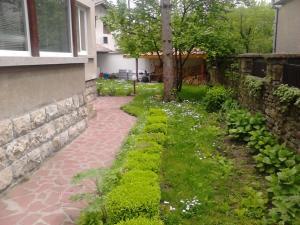 Borova House