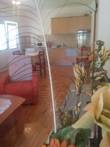 Gjole Apartments, Apartmány  Lagadin - big - 23