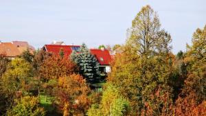 Prázdninový dům - PACL Červená Řečice