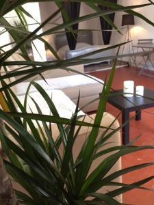 Studio Calendal, Апартаменты  Каси - big - 9