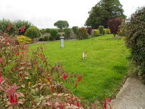 Castleview Holiday Home, Prázdninové domy  Donaghmore - big - 23