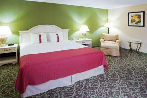Holiday Inn Chantilly-Dulles Expo Airport, Hotels  Chantilly - big - 2